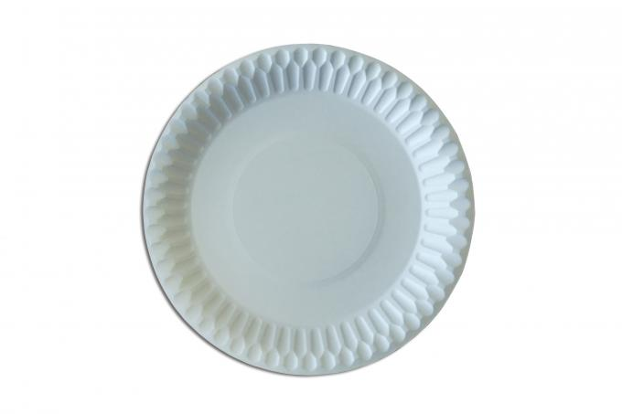 Food Contact Safety Bulk Disposable Plates , Biodegradable Paper Plates For Barbeque